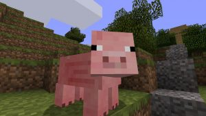 The original in-game Minecraft Pig. Click for more pictures.