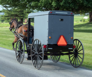 Amish__foto2 The real one